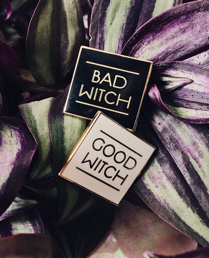 Good Witch Bad Witch Pins