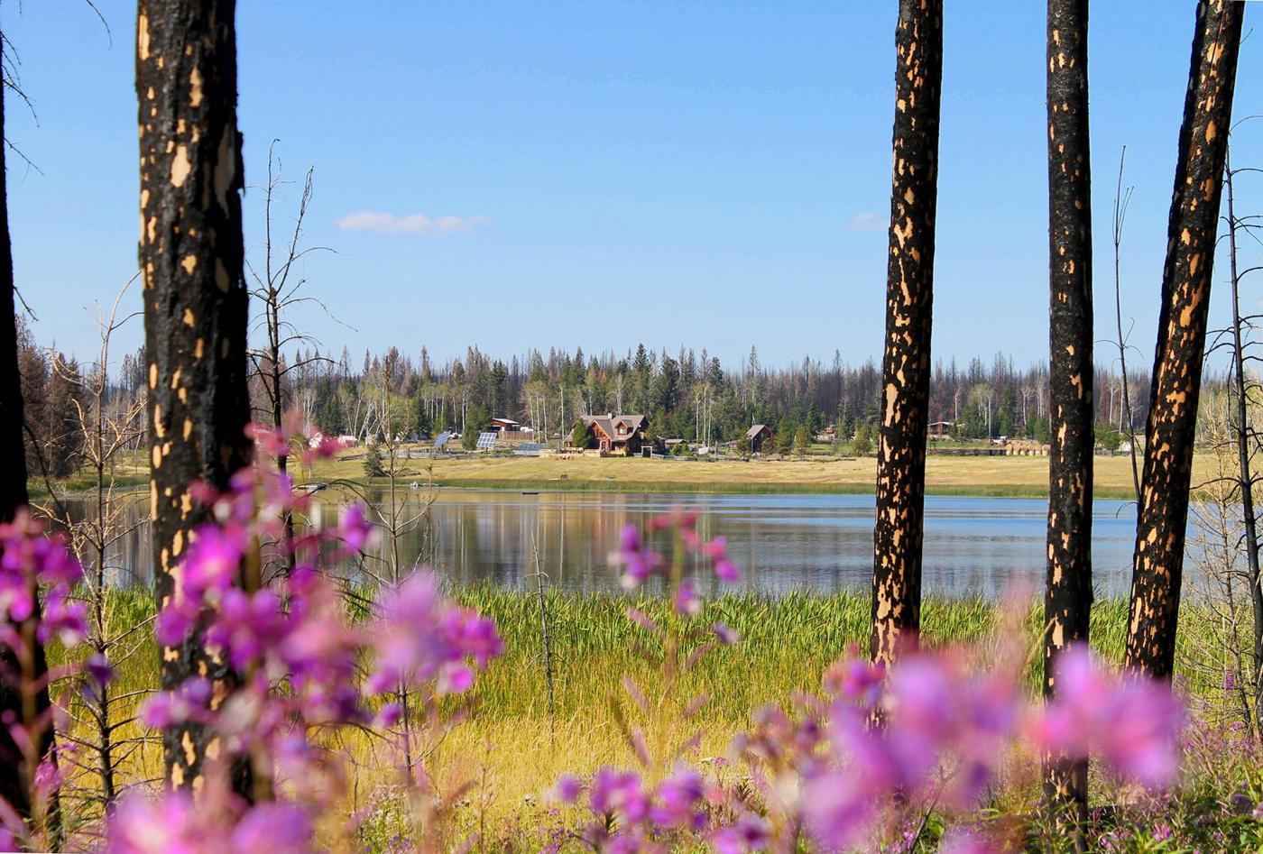 Siwash Lake Eco Adventures