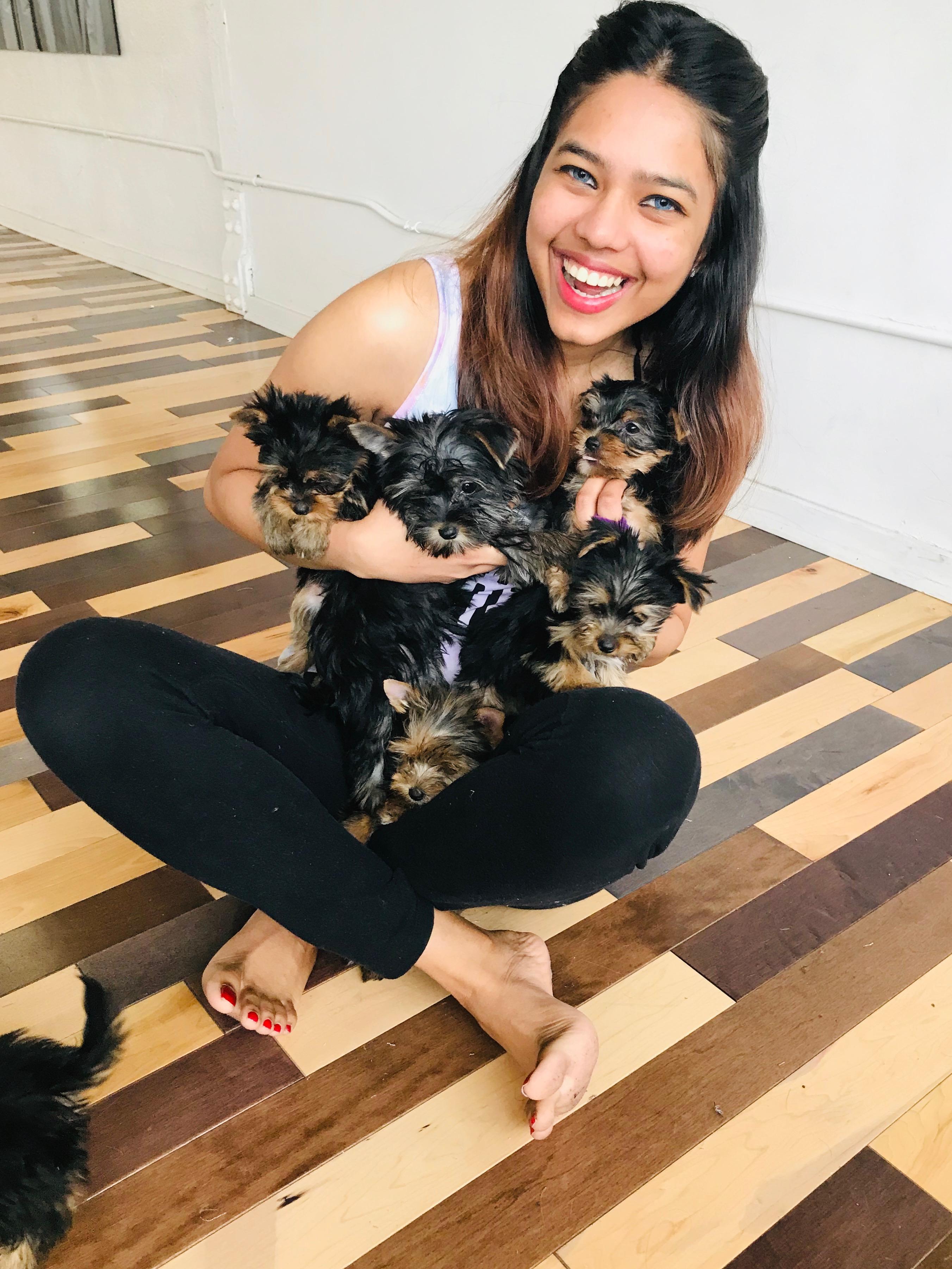 Hugging Puppies
