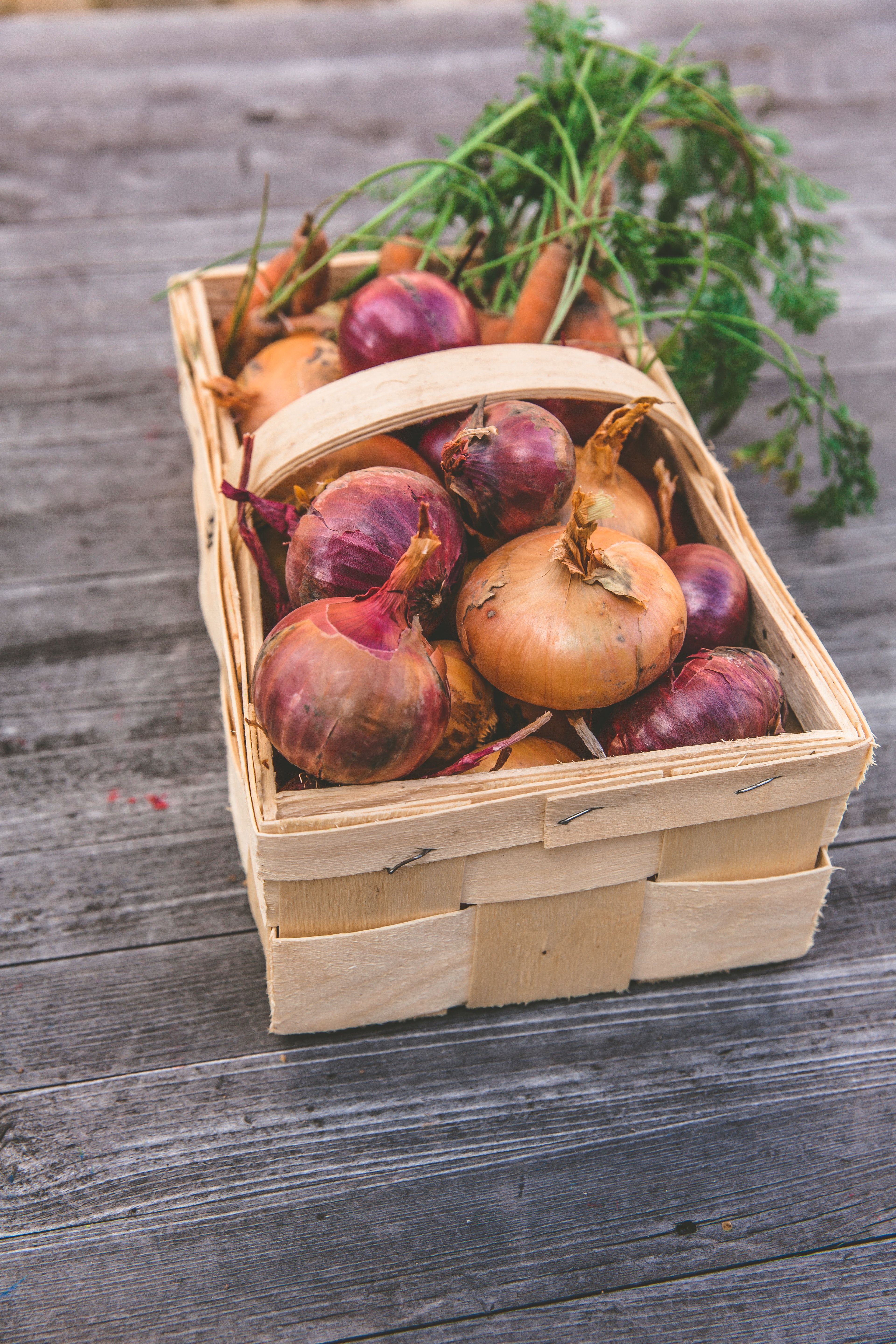 Onion basket. Source: Pexels.