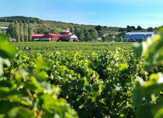 eastern-township-weekend-trip-montreal