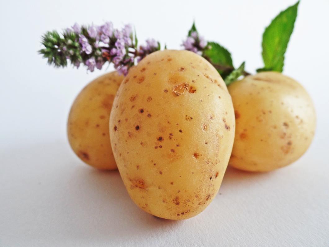 Potato. Source Pexels.