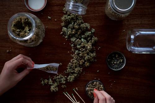 Cannabis Tempura